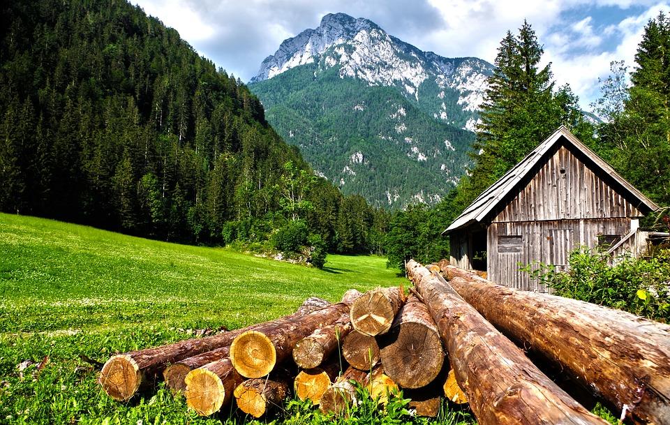 bois maisons de montagne